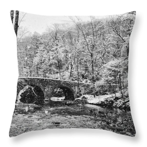 Snow Along The Wissahickon Creek Throw Pillow by Bill Cannon
