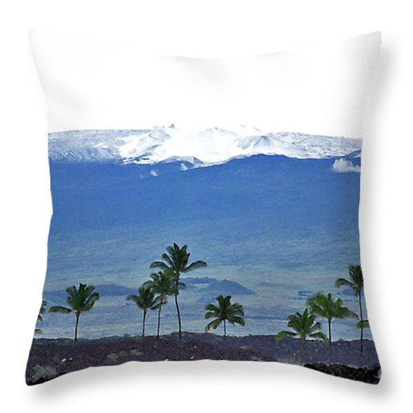 Snow On The Mountain Throw Pillow by Bette Phelan