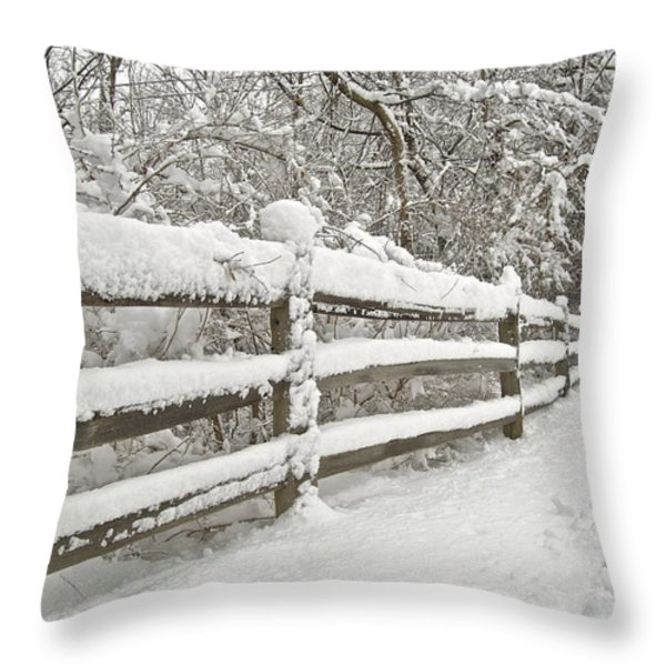 Snowy Morning Throw Pillow by Michael Peychich