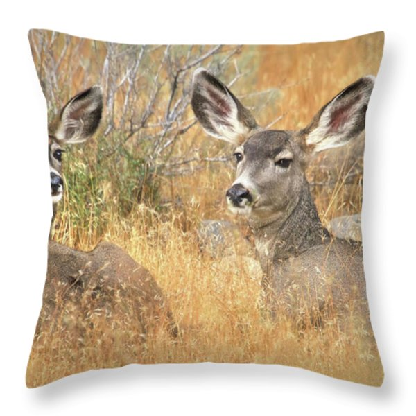 So Much For Your Secret Place... Throw Pillow by Donna Kennedy