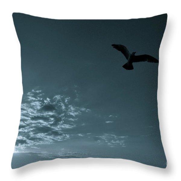 Soaring Throw Pillow by Valerie Rosen