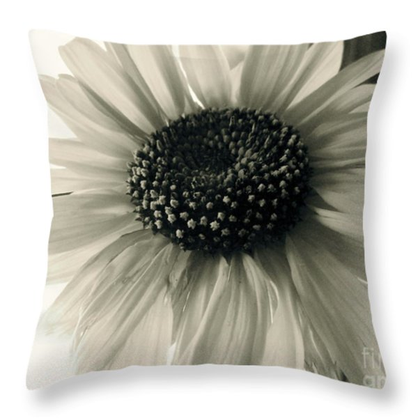 soft white light Throw Pillow by Trish Hale