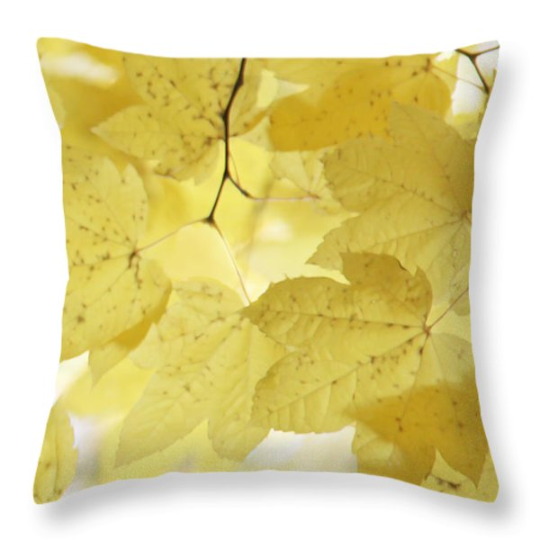 Softness Of Yellow Leaves Throw Pillow by Jennie Marie Schell