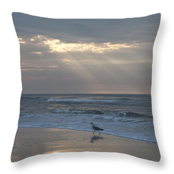 Solitude Throw Pillow by Bill Cannon