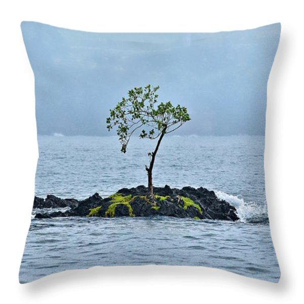 Solitude In Hilo Bay Throw Pillow by Christopher Holmes
