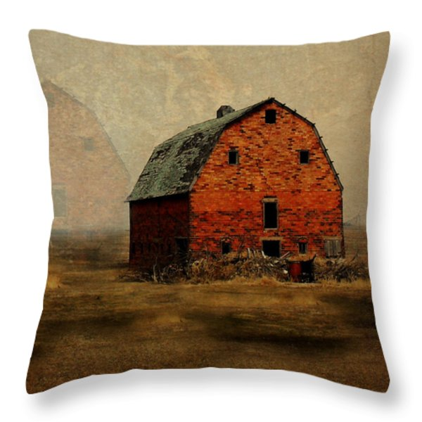 Soon To Be Forgotten Throw Pillow by Julie Hamilton
