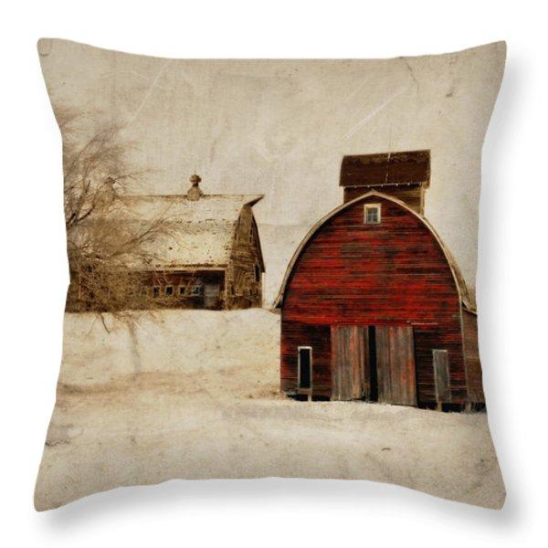 South Dakota Corn Crib Throw Pillow by Julie Hamilton