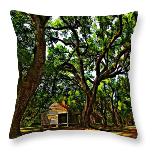 Southern Lane Throw Pillow by Steve Harrington