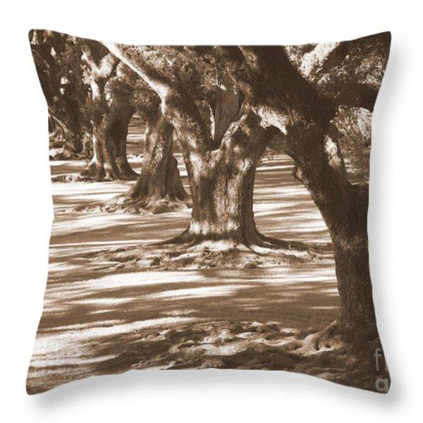 Southern Sunlight on Live Oaks Throw Pillow by Carol Groenen