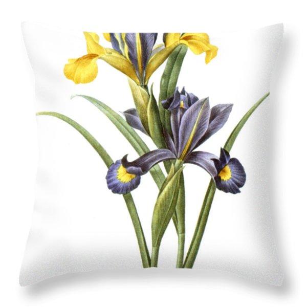 Spanish Iris Throw Pillow by Granger