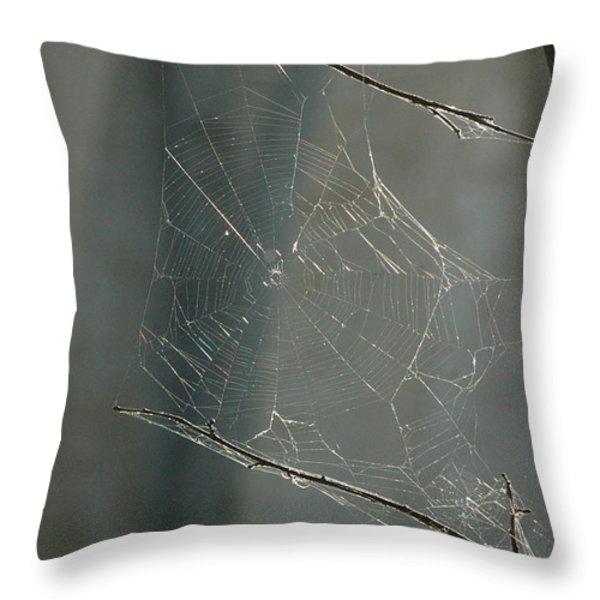 Spider Art Throw Pillow by Trish Hale
