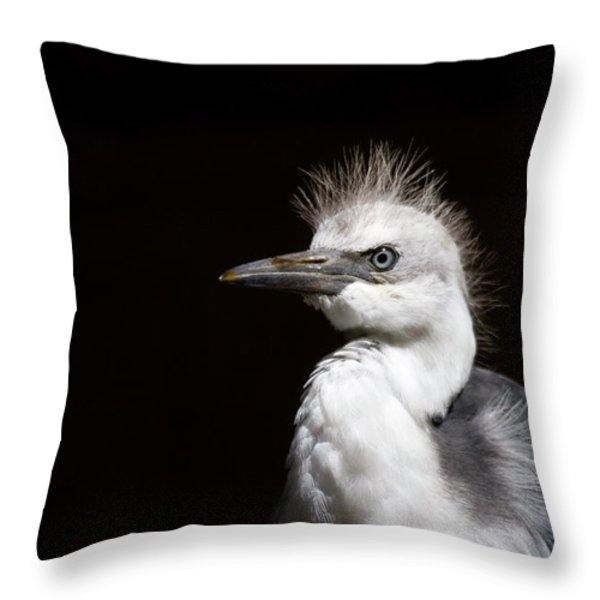 Spiked  Throw Pillow by Mike  Dawson