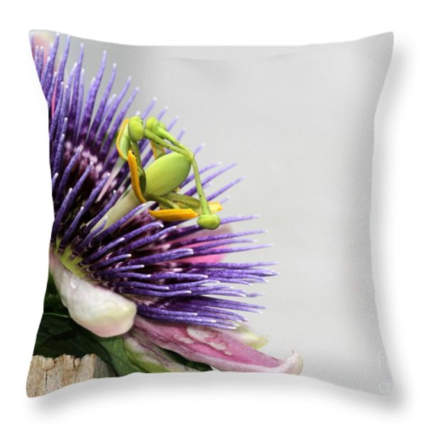 Spikey Passion Flower Throw Pillow by Sabrina L Ryan