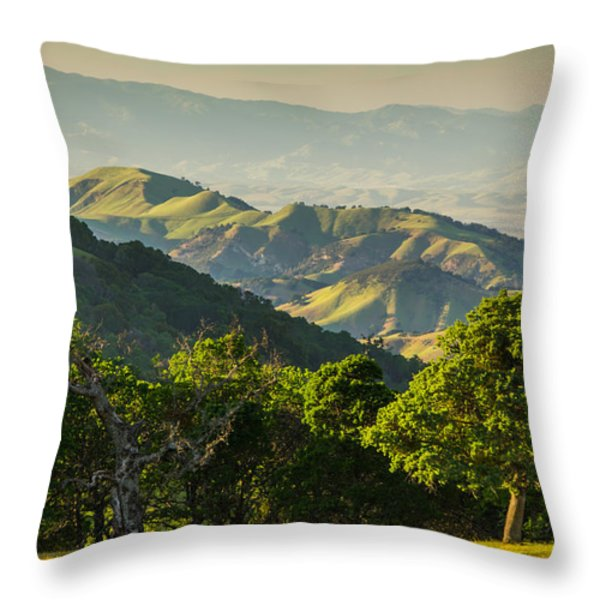 Spring Afternoon Throw Pillow by Marc Crumpler