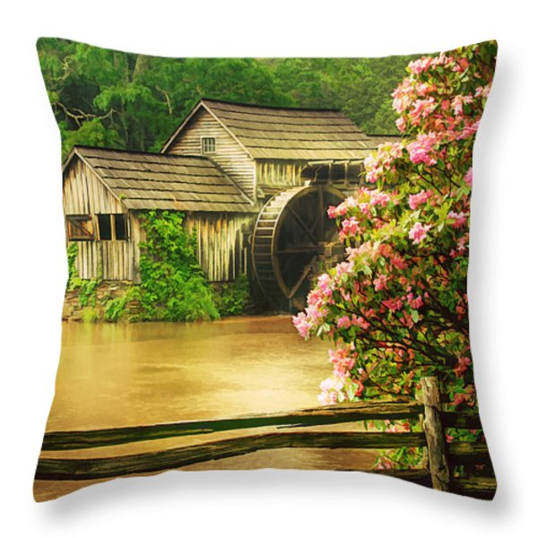 Spring At The Mill Throw Pillow by Darren Fisher