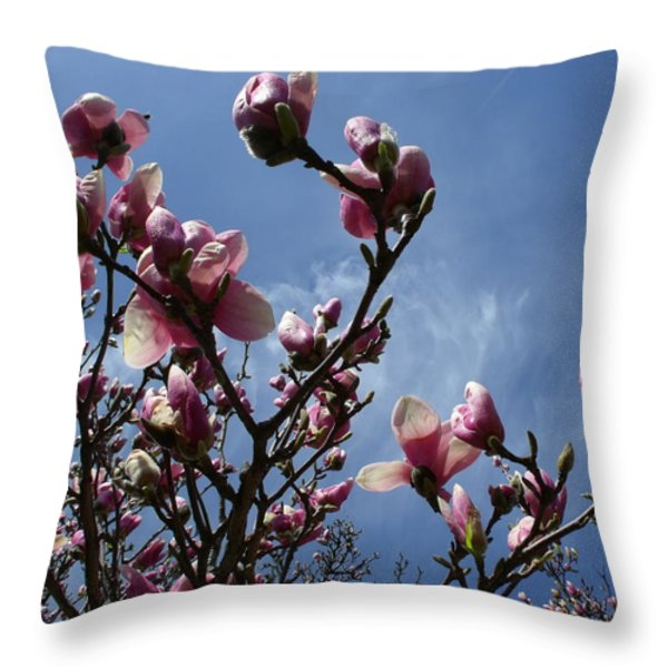 Spring Blooms 2010 Throw Pillow by Anna Villarreal Garbis