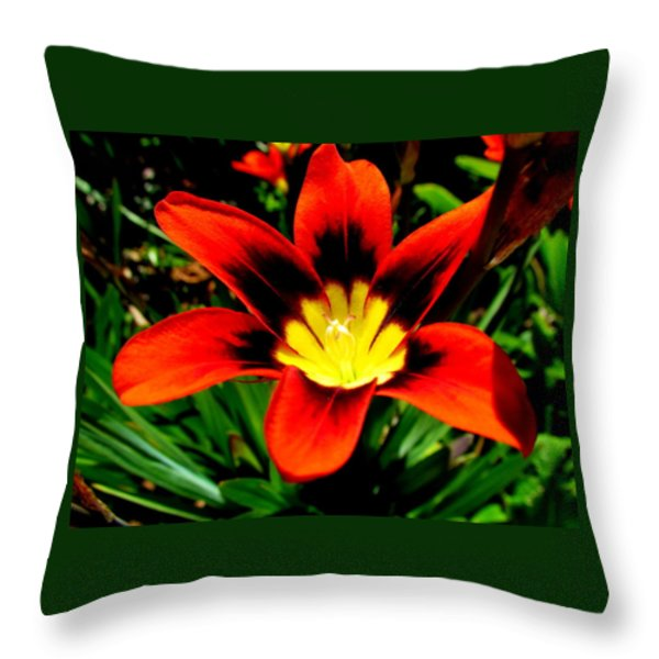 Spring Flower Throw Pillow by Joyce Woodhouse