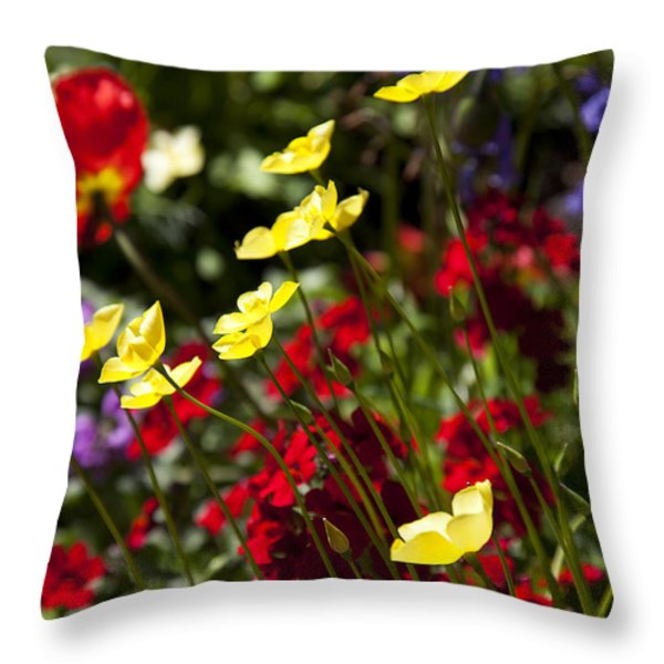 Spring Flowers Throw Pillow by Garry Gay