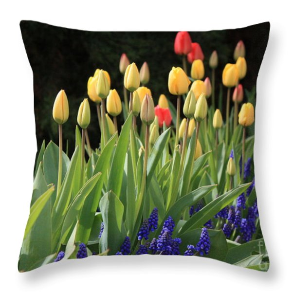 Spring Garden Throw Pillow by Carol Groenen