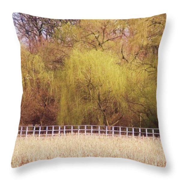 Spring I Throw Pillow by Anna Villarreal Garbis