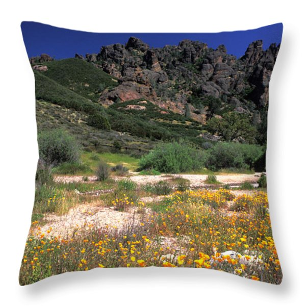 Spring in the Pinnacles Throw Pillow by Kathy Yates