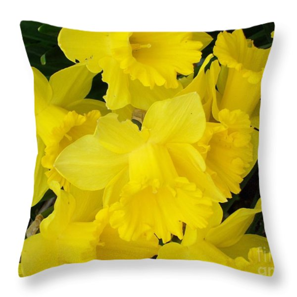Springtime In Ireland Throw Pillow by Patrick J Murphy