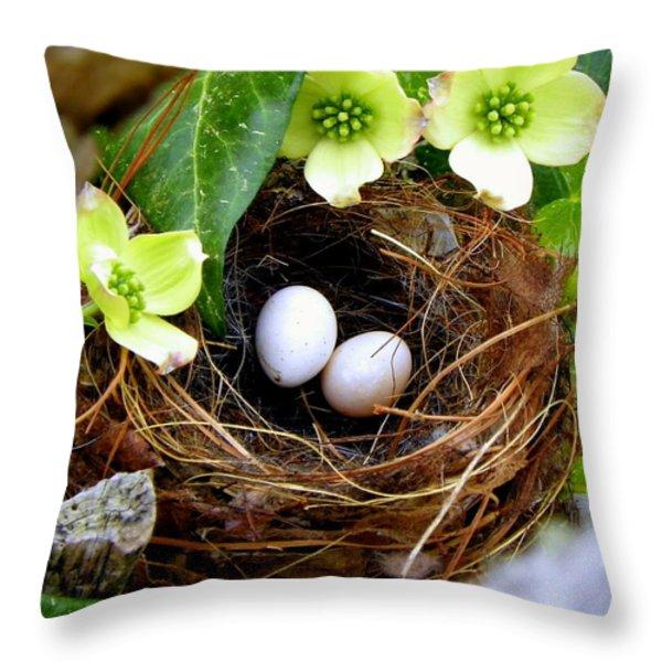 Springtime Throw Pillow by Karen Wiles