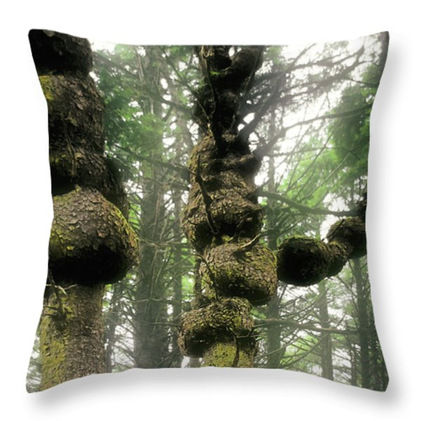 Spruce Burl Olympic National Park Beach 1 WA Throw Pillow by Christine Till
