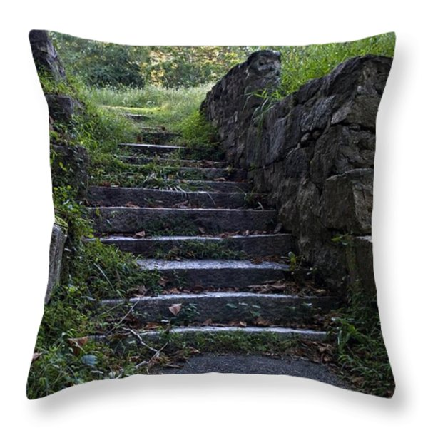 Stairs To . . . Throw Pillow by Murray Bloom