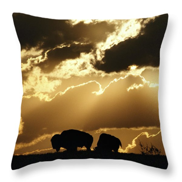 Stately American Bison Throw Pillow by George F. Mobley