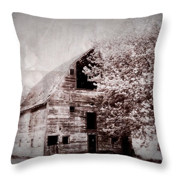 Still Here Throw Pillow by Julie Hamilton