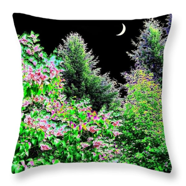Still Of The Night Throw Pillow by Will Borden