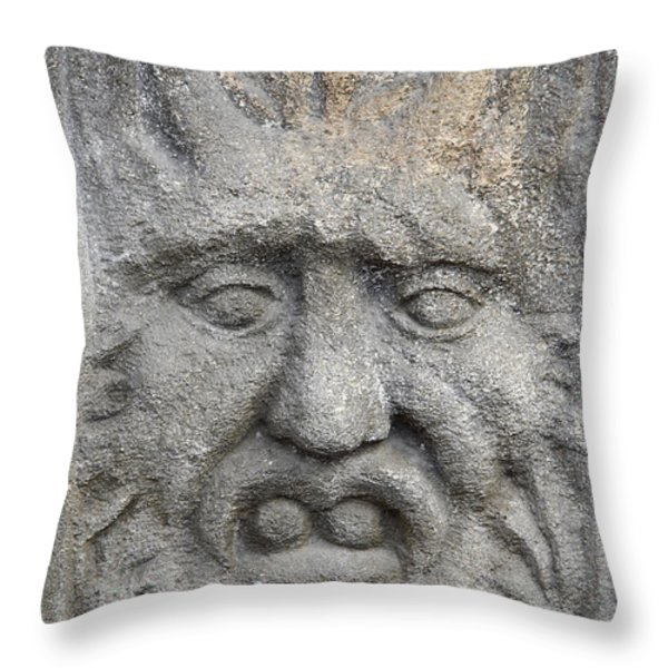 stone face Throw Pillow by Michal Boubin