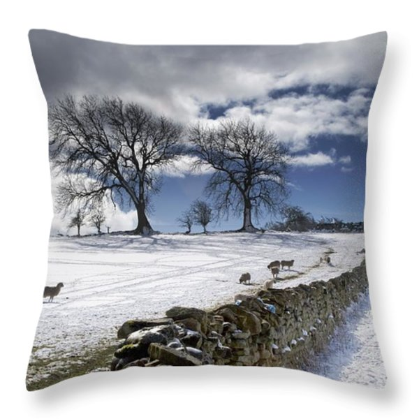 Stone Fence, Weardale, County Durham Throw Pillow by John Short