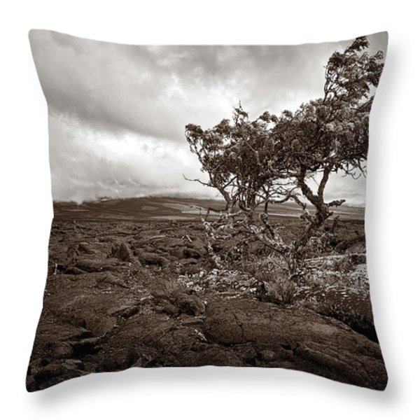 Storm Moving In - Sepia Throw Pillow by Christopher Holmes