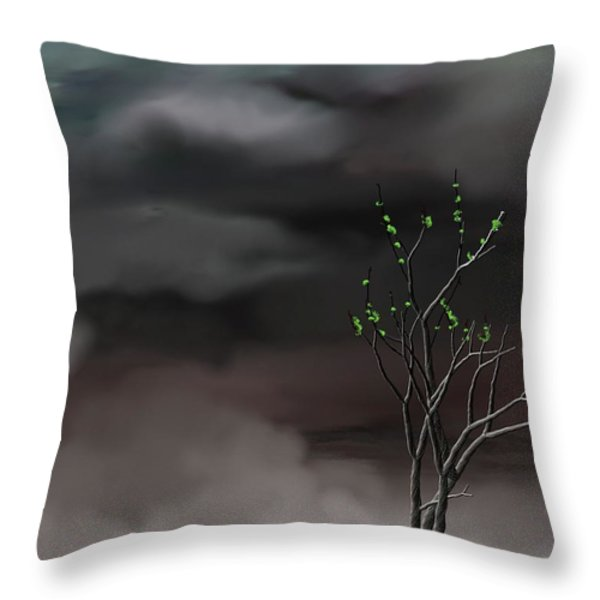 Stormy Weather Throw Pillow by David Lane