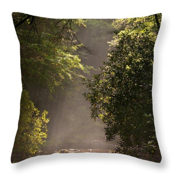 Stream Light Throw Pillow by Steve Gadomski