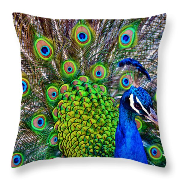 Strut Throw Pillow by Angelina Vick