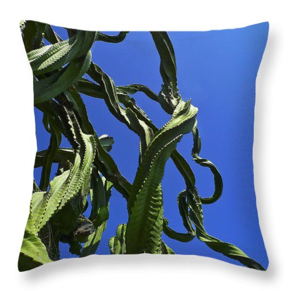 Sugar Pants Throw Pillow by Skip Hunt