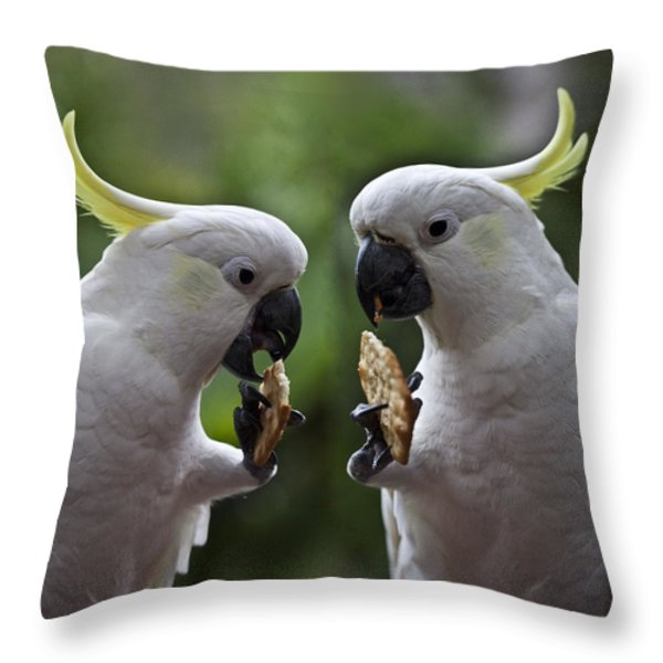 Sulphur Crested Cockatoo Pair Throw Pillow by Sheila Smart