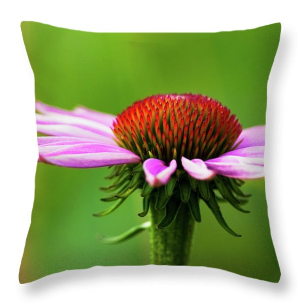 Summer Burst... Throw Pillow by Nina Stavlund