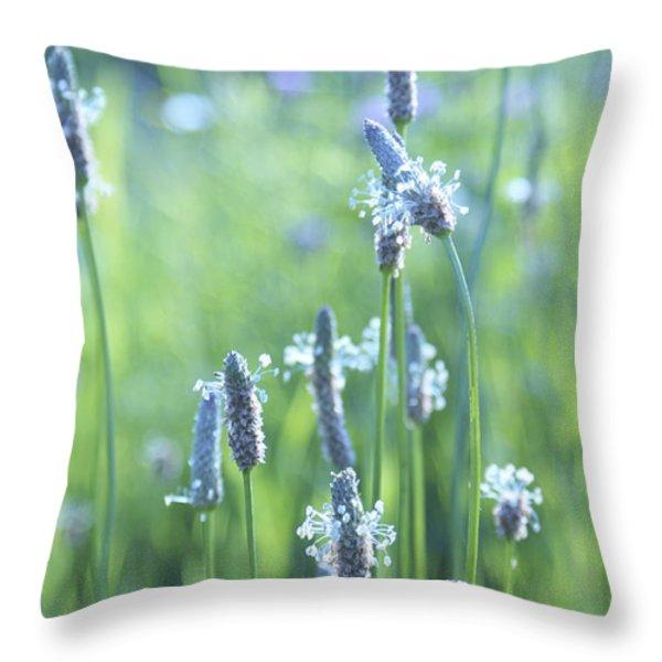 Summer Charm Throw Pillow by Aimelle