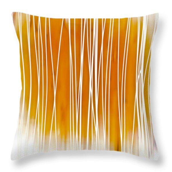 Throw Pillow featuring the painting Summer Day I by Frank Tschakert