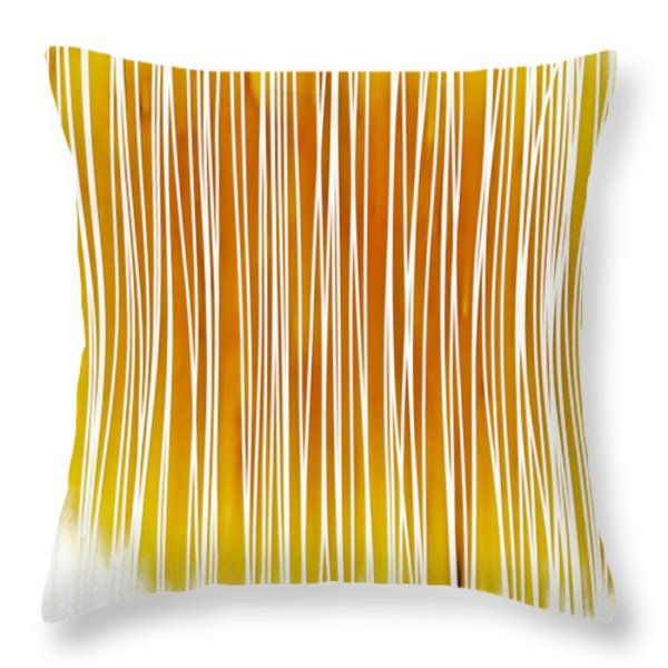 Throw Pillow featuring the painting Summer Day II by Frank Tschakert