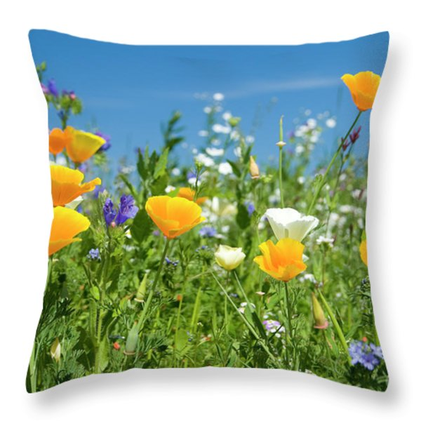 Summer Flowers Throw Pillow by Sophie De Roumanie