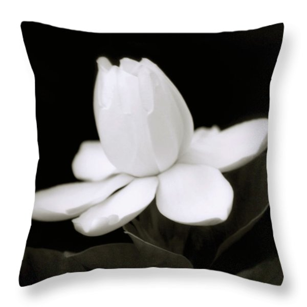 Summer Fragrance Throw Pillow by Holly Kempe