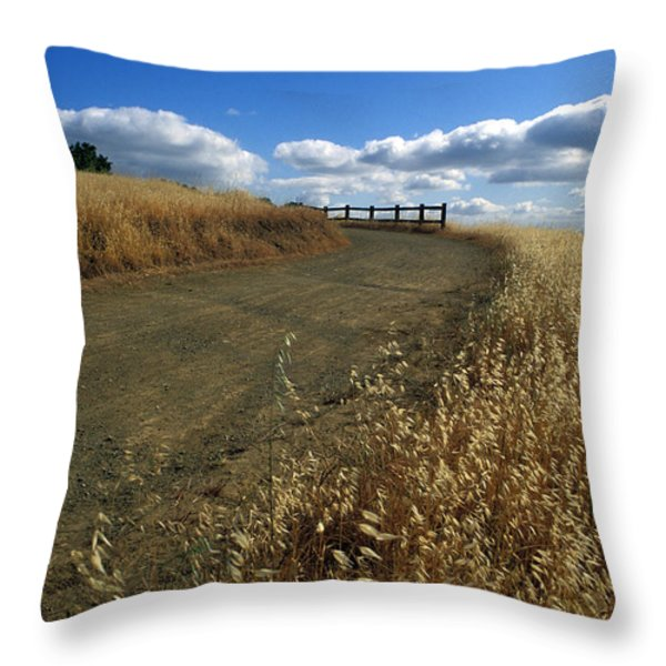 Summer Road Throw Pillow by Kathy Yates