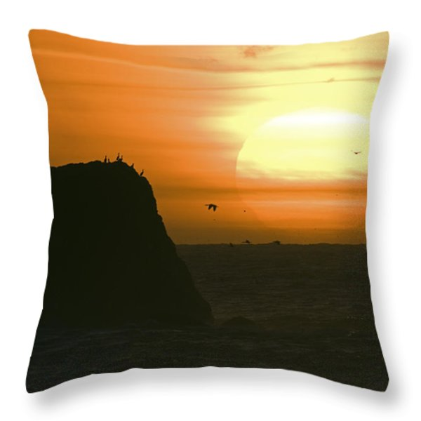 Sun Setting With Flying Birds Throw Pillow by Rich Reid