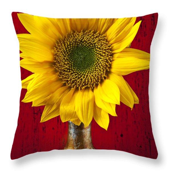 Sunflower Close Up Throw Pillow by Garry Gay