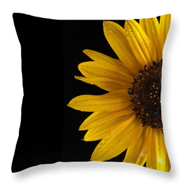 Sunflower Number 3 Throw Pillow by Steve Gadomski